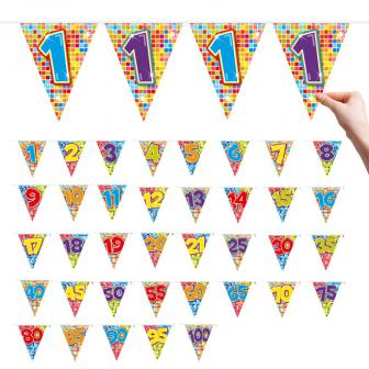 "Zahlen-Wimpel-Girlande ""Happy Crazy Birthday"" 6 m - 20"