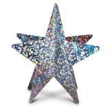Glänzender 3D-Stern aus Pappe 30 cm -silber