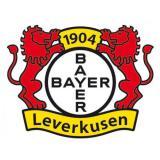 "Fan-Aufkleber ""Bayer 04 Leverkusen"" 6 cm"