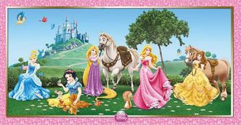 Disney Prinzessinnen Deko